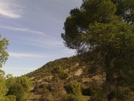 Dernier paysage