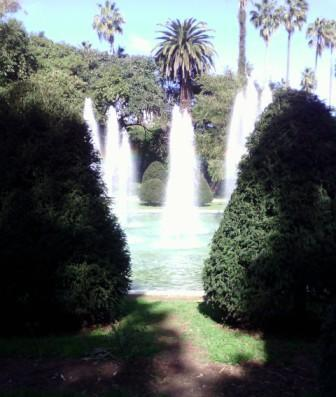Jardin d'Essai à Alger