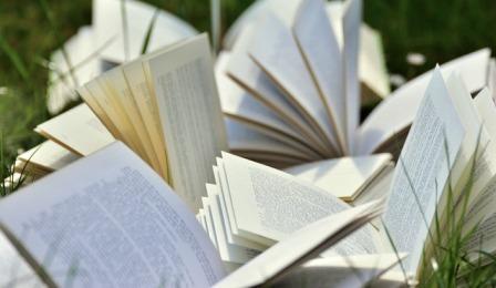 Books 2241635 640